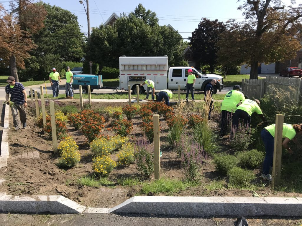 Green Infrastructure Archives Wendel